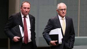 turnbull and joyce