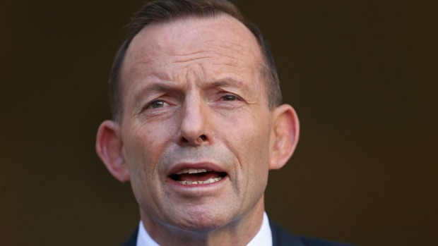 abbott mouth open