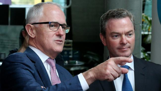 turnbull and pyne