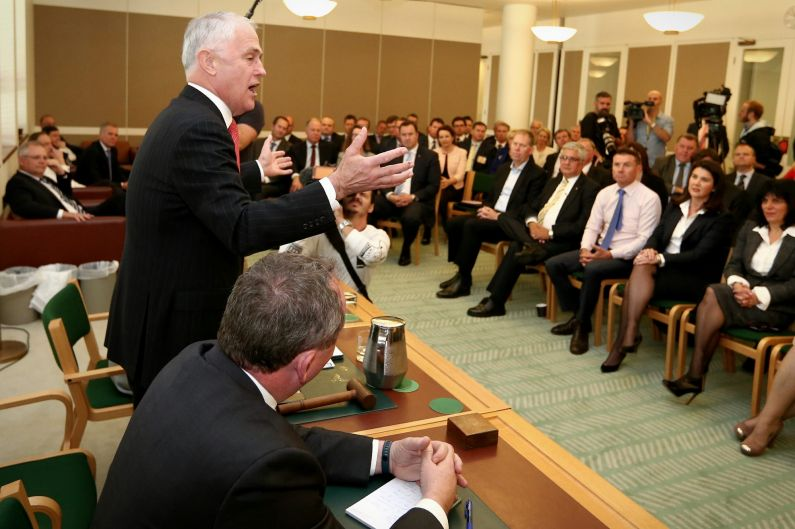 Turnbull addresses party room